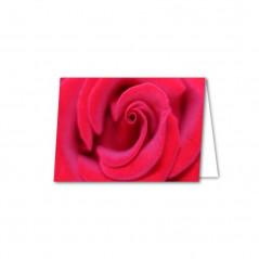 Bilecik Róża